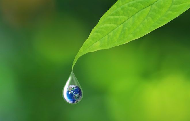 leaf with water droplet containing Earth inside